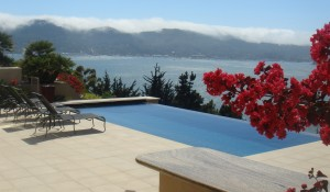 TIBURON – COLLECTOR'S TERRACED GARDEN