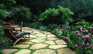 Schwartz and associates landscape architecture and design for Garden design mill valley