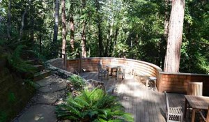 MILL VALLEY – CREEKSIDE RESTORATION