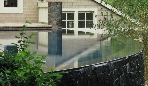 MILL VALLEY – WOODED INFINITY POOL